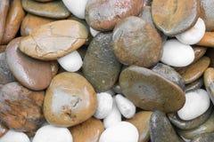 Piedras de la grava del primer para el piso decorativo Fotografía de archivo libre de regalías