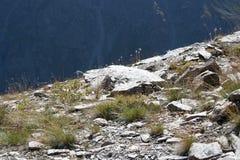 Piedras de la montaña Fotografía de archivo