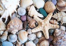 Piedras de la playa Fotos de archivo libres de regalías