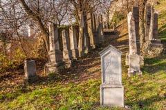 Piedras de la tumba en el cementerio judío debajo del castillo medieval Beckov Foto de archivo libre de regalías