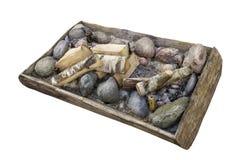 Piedras de madera y del granito de abedul Foto de archivo
