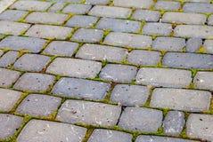 Piedras de pavimentación grises Imagen de archivo libre de regalías