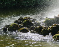 Piedras de Petergof Imagen de archivo libre de regalías