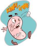 Piedras de riñón Foto de archivo libre de regalías