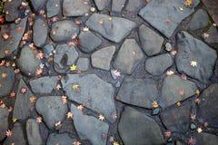 Piedras del adoquín Fotografía de archivo libre de regalías