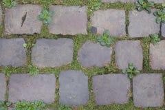 Piedras del adoquín en una calle de Praga Fotos de archivo