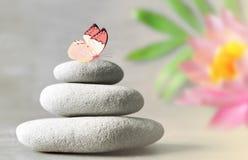 Piedras del balneario con el lirio de la flor en fondo ligero Fotografía de archivo