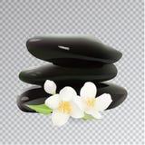 Piedras del balneario con Jasmine Flower Ilustración del vector Elementos de la plantilla para la tienda cosmética, salón del bal Fotos de archivo libres de regalías