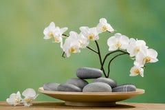 Piedras del balneario con la orquídea Imagenes de archivo