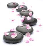 Piedras del balneario con los pétalos color de rosa en blanco. Foto de archivo libre de regalías