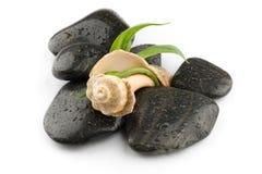 Piedras del balneario del zen con el shell del mar stock de ilustración