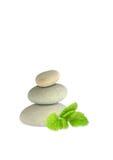 Piedras del balneario e hierba del bálsamo de limón foto de archivo