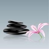 Piedras del balneario y flor del lirio. Ejemplo del vector Fotografía de archivo libre de regalías