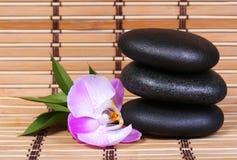Piedras del balneario y flor rosada de la orquídea con las hojas verdes Fotografía de archivo