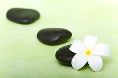 Piedras del balneario y flor tropical del frangipani Fotografía de archivo