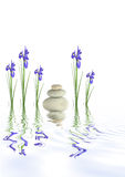 Piedras del balneario y flores del diafragma Fotografía de archivo