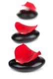 Piedras del balneario y pétalos color de rosa rojos aislados Imagen de archivo libre de regalías