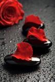 Piedras del balneario y pétalos color de rosa sobre fondo negro Fotografía de archivo