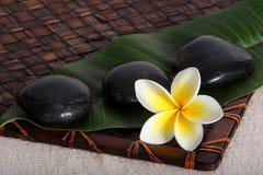 Piedras del masaje con Frangiapani Fotos de archivo libres de regalías