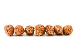 Piedras del melocotón. Foto de archivo libre de regalías