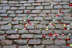Piedras del pavimento Imagen de archivo libre de regalías