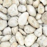Piedras del río blanco Fotos de archivo