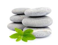Piedras del zen con las hojas Imagen de archivo