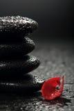 Piedras del zen y pétalos color de rosa sobre negro Foto de archivo