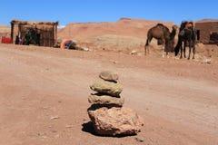 Piedras delante de camellos fotografía de archivo libre de regalías