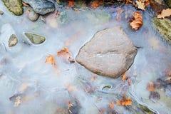 Piedras en agua de mar congelada Foto de archivo libre de regalías