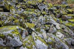 Piedras en el musgo Fotos de archivo libres de regalías