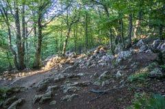 Piedras en la montaña Imagenes de archivo