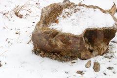 Piedras en la nieve a lo largo de una trayectoria con una pared de piedra que alinea el río Imagen de archivo libre de regalías
