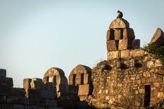 Piedras en Tughlakabad, arquitectura india Fotos de archivo libres de regalías