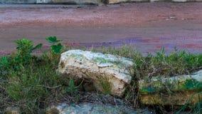 Piedras encima del banco de un segmento urbano de un río imagenes de archivo
