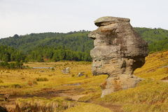 Piedras encimadas dolina IV obrazy royalty free
