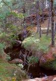 Piedras encimadas valley XV Stock Photography