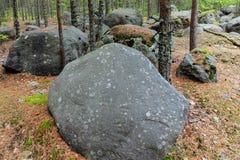 Piedras grandes en el bosque Imagen de archivo libre de regalías