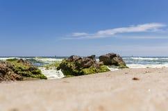 Piedras grandes en la playa con alga marina Foto de archivo libre de regalías
