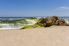Piedras grandes en la playa con alga marina Foto de archivo