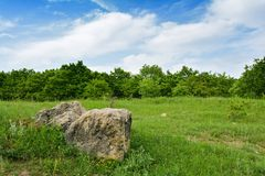 Piedras grandes en un prado verde Foto de archivo libre de regalías