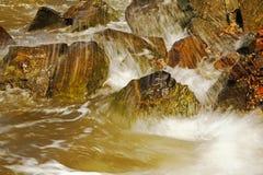 Piedras mojadas agradables Foto de archivo