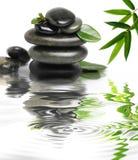 Piedras mojadas con hojas verdes imagen de archivo libre de regalías