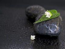 Piedras negras con descensos de la hoja, de la flor y del agua encendido Imagenes de archivo