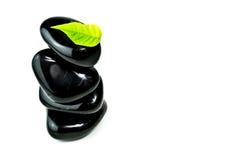 Piedras negras con las hojas verdes Foto de archivo libre de regalías