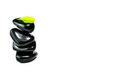 Piedras negras con las hojas verdes Imagen de archivo