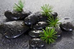 Piedras negras del balneario Imagen de archivo libre de regalías