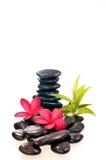 Piedras negras del zen con las flores rojas del frangipani Fotografía de archivo libre de regalías