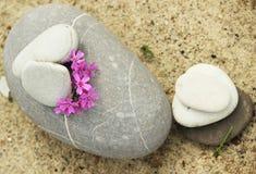Piedras para la meditación Imágenes de archivo libres de regalías