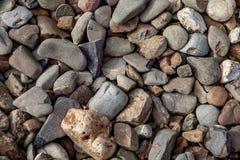Piedras redondas por la orilla del río Imagen de archivo